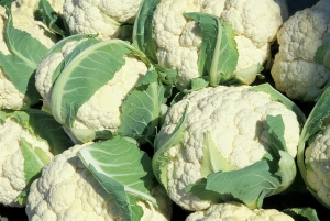 cauliflower-805414_640