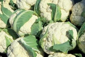 cauliflower-805414_640